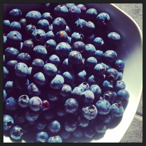 Blue is Berry Good For You